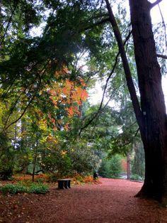 Biltmore Estate grounds
