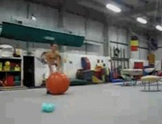 Things Almost Going Horribly Wrong (Presented In GIF Form)