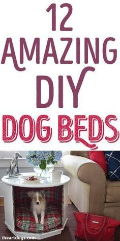 Give your dog the gift of relaxation with these simple tips on how to create your own fun, DIY dog beds. The Secret Life of Pets In Theaters July 8 Diy Dog Bed, Doggie Beds, Pet Beds For Dogs, Cat Beds, Diy Recycling, Designer Dog Beds, Fru Fru, Dog Furniture, Animal Projects