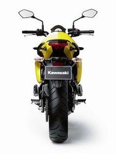 Kawasaki Ern Specification