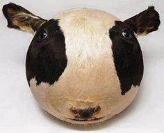 Inflated cow's head by taxidermy artist Géza Szöllősi. Image via www.facebook.com/WurldzOfAhrt.