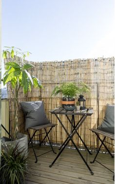 Bamboo Fence Ideas For Outdoor Privacy - Unique Balcony & Garden Decoration and Easy DIY Ideas Small Balcony Decor, Small Balcony Garden, Small Balcony Design, Small Balconies, Balcony Ideas, Apartment Balcony Garden, Apartment Balcony Decorating, Apartment Balconies, Apartment Ideas