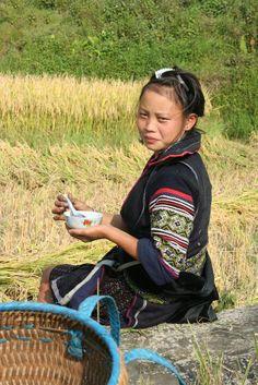 black Hmong woman farmer taking a break in a rice field, Sapa, northwest Vietnam