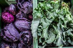 Workshop, Cabbage, Vegetables, Atelier, Work Shop Garage, Cabbages, Vegetable Recipes, Brussels Sprouts, Veggies