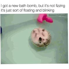 here can I get this bath bomb
