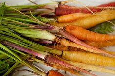 Blackberry Farm: Carrots Then and Now
