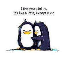 I like you a lottle. Aww thanks Barbara:). I like you a lottle too:) Cute Friendship Quotes, Happy Friendship, Image Citation, Best Friend Quotes, Make Me Smile, Decir No, Funny Pictures, Funny Quotes, Quotes Quotes