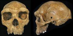 Teria um Homem de Neandertal sido morto por um viajante do tempo?