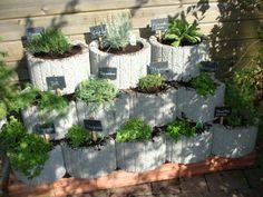 succulent garden care Klicke a - gardencare Herb Garden Design, Garden Types, Diy Garden Decor, Garden Cottage, Garden Beds, Plantar Mango, Pallets Garden, Garden Signs, Garden Care