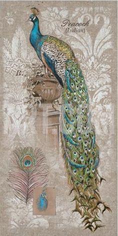 Hand Painted Peacock (Indian) / ShiShiart Trading Company
