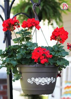 Use a craft cutter to make vinyl decals to add pizzazz to plastic hanging baskets. So smart!