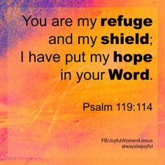 PSALM  119:114    .......Keep your hope in God!!