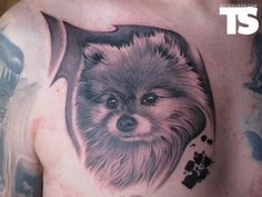 I'd never get Jake as a Pomeranian tattoo, but this is damn good.