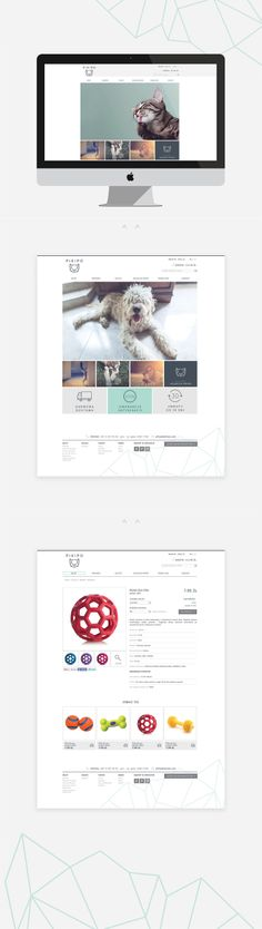 Pikipo #interface #design #UI #website #web