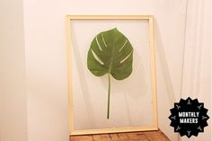 Monthly Makers - Natur. Inramad Monstera i transparent ram.