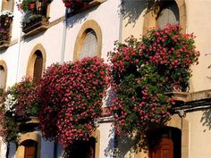 balcony decorating with flowers