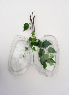 conceptual sculpture lungs greenery