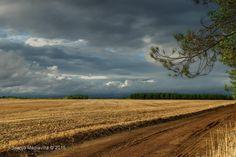 Más allá de los bosques ~ Fotografía Juanjo Mediavilla