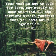 seek and find all the barriers within yourself that you have built against finding love