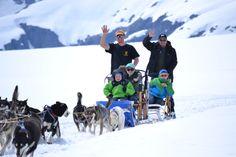 Juneau Alaska and Skagway Alaska Dog Sledding and Helicopter Glacier Flightseeing - Alaska Icefield Expeditions   Alaska Summer Glacier Dogsledding and Husky Tours