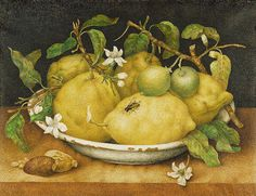Old Painting, Giovanna Garzoni, Still Life with Bowl of Citrons, 1640. I love it....