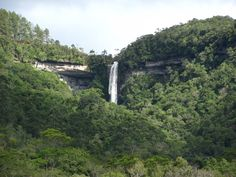 A cidade de Benedito Novo - SC tem várias cachoeiras para os amantes da natureza. #beneditonovo #sc #brasil
