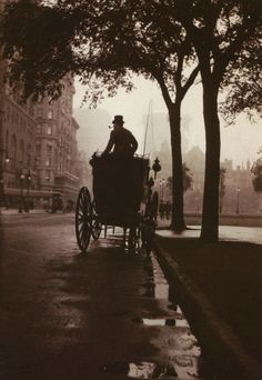 Central Park, New York, c. 1900   from Anonymous by Robert Flynn Johnson