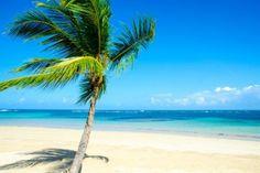 Dominikanische Republik -Traumstrände und  karibisches Feeling