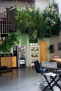 Snog productions' magical garden workspace the indoor jungle Apartment Therapy, Apartment Ideas, Outdoor Furniture Sets, Outdoor Decor, Growing Plants, Beautiful Kitchens, Houseplants, Indoor Plants, Indoor Gardening