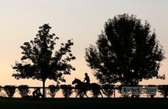 Photo Gallery: Keeneland prepares for its 2012 fall meet. See more photos at www.kentucky.com/2012/10/04/2359892/keeneland-prepares-for-friday.html.