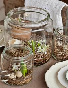 Spring in a Jar: Bulb, Flowers and eggs. Spring in a Jar: Bulb, Flowers and eggs. Easter Table, Easter Eggs, Large Mason Jars, Centerpieces, Table Decorations, Spring Decorations, Outdoor Decorations, Deco Floral, Spring Nature