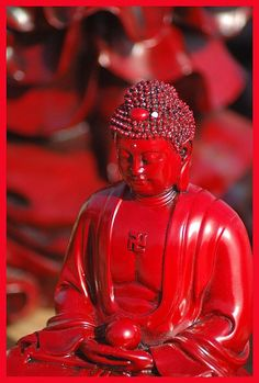 From Jen's Photography on flickr.com    Gorgeous red Buddha.