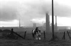 Henri Cartier-Bresson -  England. Tyne and Wear. Newcastle. 1978.