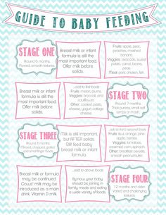 Guide to Baby Feeding