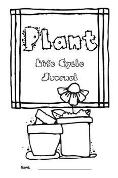 Plant Life-Cycle
