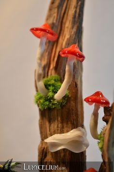 LUMYCELIUM - Mushrooms lamps for an imaginary atmosphere. Mushroom Crafts, Mushroom Decor, Giant Mushroom, Mushroom House, Edible Mushrooms, Stuffed Mushrooms, Flower Fairy Lights, Mushroom Lights, Hedgehog Craft