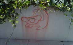 Haha I remember seeing this  :)  Simba. Towers Patio on the University of Pittsburgh campus
