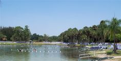 Nature�s Hospital:  Warm Mineral Springs
