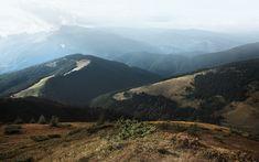 Nature Aesthetic, Mount Rainier, Ukraine, Fields, Photo Wall, Community, Mountains, Landscape, Travel