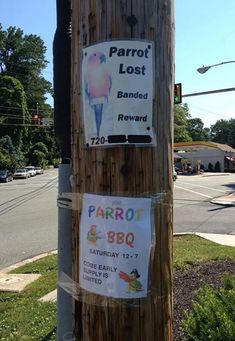 Parrot Lost and Found Sign