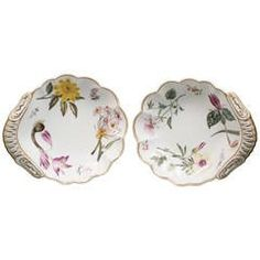 Pair of English Spode Porcelain Botanical Shell-Shape Dishes, circa 1820