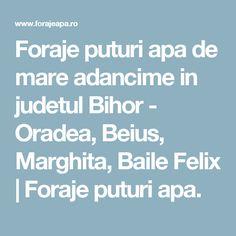 Foraje puturi apa de mare adancime in judetul Bihor - Oradea, Beius, Marghita, Baile Felix | Foraje puturi apa.