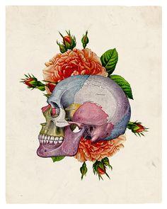 Skull www.creativeboysclub.com/