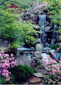 Rockford, Illinois - Anderson Gardens - I know I couldn't live here but this garden is gorgeous!