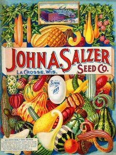 John A. Salzer Seed Co. 1899 spring catalog