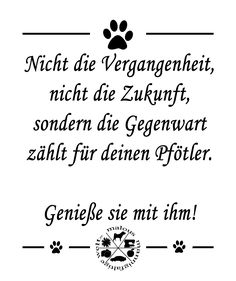 Not the future and not the past is important for your pawtner. Only the present. Enjoy it with him/her! ▪▪▪▪▪ ✏ @photoshop __ Www.malousmannigfaltigewelt.wordpress.com