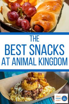 This is the Ultimate List of the Best Snacks at Animal Kingdom park in Disney World. Here you'll find every Must-Try Savory and Sweet treat! Disney World Secrets, Disney World Food, Disney World Parks, Disney World Tips And Tricks, Disney Worlds, Disney Tips, Dining At Disney World, Disney Dining Tips, Disney World Vacation Planning
