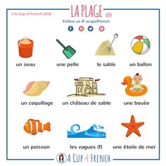 Learn French with A Cup of French! Easy and fun lessons with infographics and videos. You can enjoy your cup of French wherever you want and at your own pace.