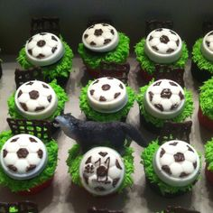 Cupcakes for a little girl who loves soccer and wolves.