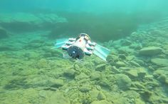 Watch this Arduino-controlled, autonomous robot swim underwater | #Robotics ▷